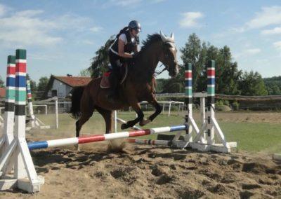 oboz-konie-2015-7-0089