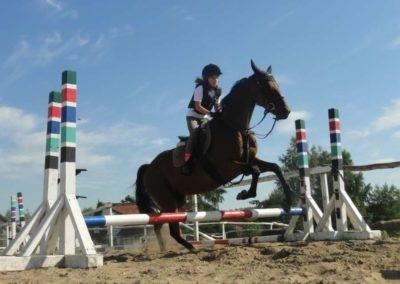 oboz-konie-2015-7-0090