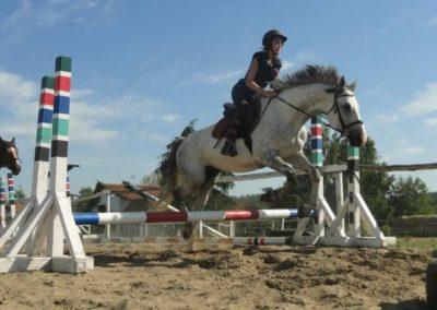 oboz-konie-2015-7-0092