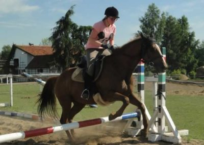oboz-konie-2015-7-0095