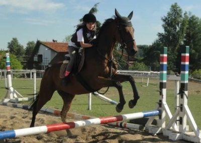 oboz-konie-2015-7-0096