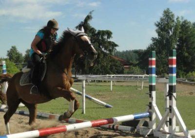 oboz-konie-2015-7-0097