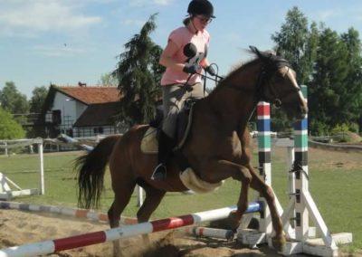 oboz-konie-2015-7-0099