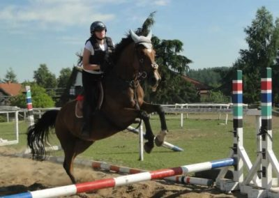 oboz-konie-2015-7-0100