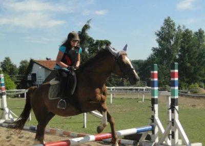 oboz-konie-2015-7-0104