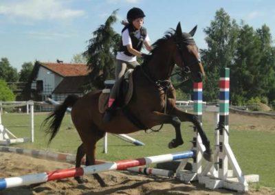 oboz-konie-2015-7-0106