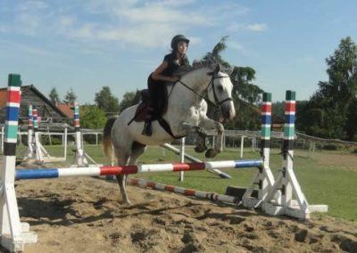 oboz-konie-2015-7-0108