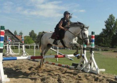 oboz-konie-2015-7-0109