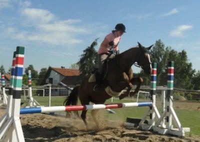 oboz-konie-2015-7-0110