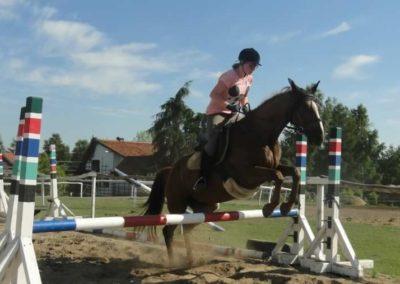 oboz-konie-2015-7-0111