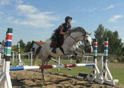 oboz-konie-2015-7-0112