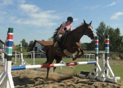 oboz-konie-2015-7-0113