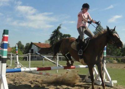 oboz-konie-2015-7-0115