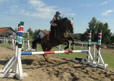 oboz-konie-2015-7-0116