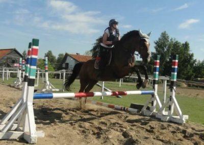 oboz-konie-2015-7-0117