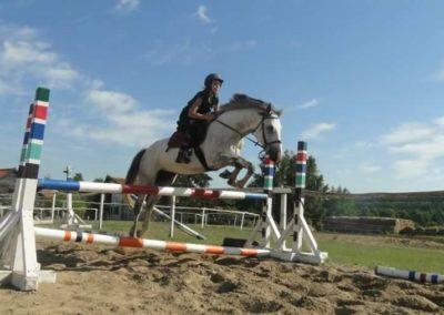oboz-konie-2015-7-0118