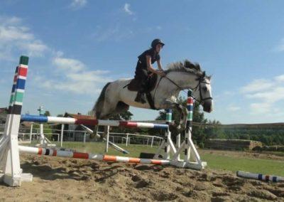 oboz-konie-2015-7-0119