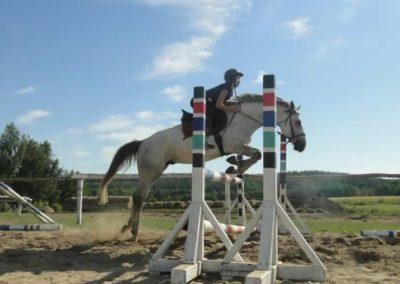 oboz-konie-2015-7-0120