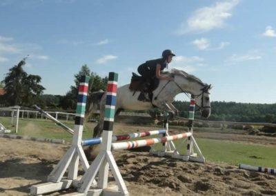 oboz-konie-2015-7-0121