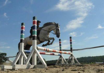 oboz-konie-2015-7-0122