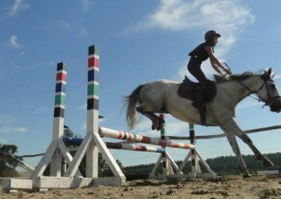 oboz-konie-2015-7-0123