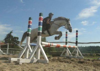 oboz-konie-2015-7-0124