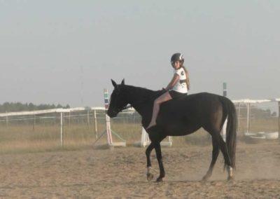 oboz-konie-2015-7-0125