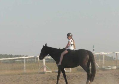 oboz-konie-2015-7-0126