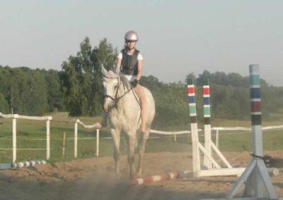 oboz-konie-2015-7-0129