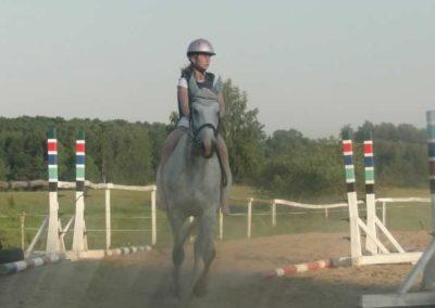 oboz-konie-2015-7-0131
