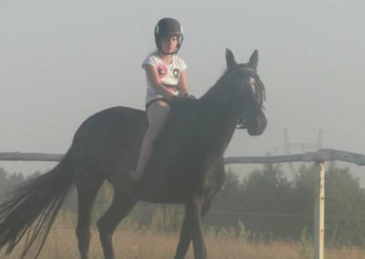 oboz-konie-2015-7-0133