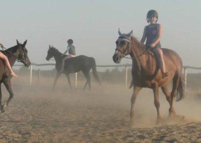 oboz-konie-2015-7-0134
