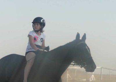 oboz-konie-2015-7-0135