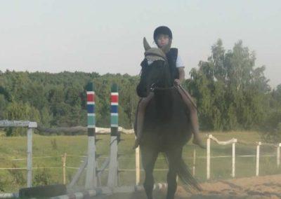 oboz-konie-2015-7-0138