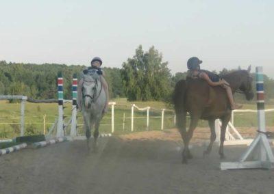 oboz-konie-2015-7-0141