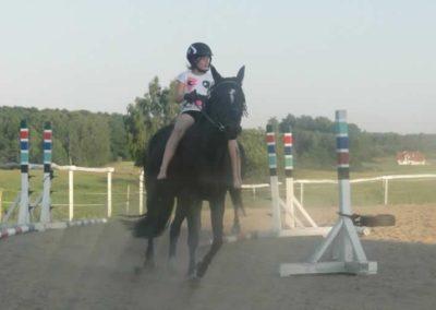 oboz-konie-2015-7-0143