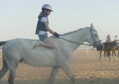 oboz-konie-2015-7-0144