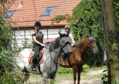 oboz-sport-0-0005